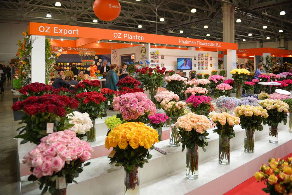каковы условия посещения выставка цветов и флористика в москве 2016
